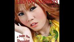 LadyBoy Stunners 3