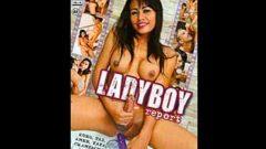 Ladyboy Report