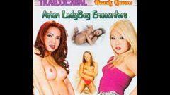 Asian LadyBoy Encounters