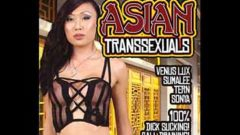 Asian Transsexuals