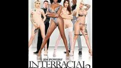 Interracial Transsexuals 2