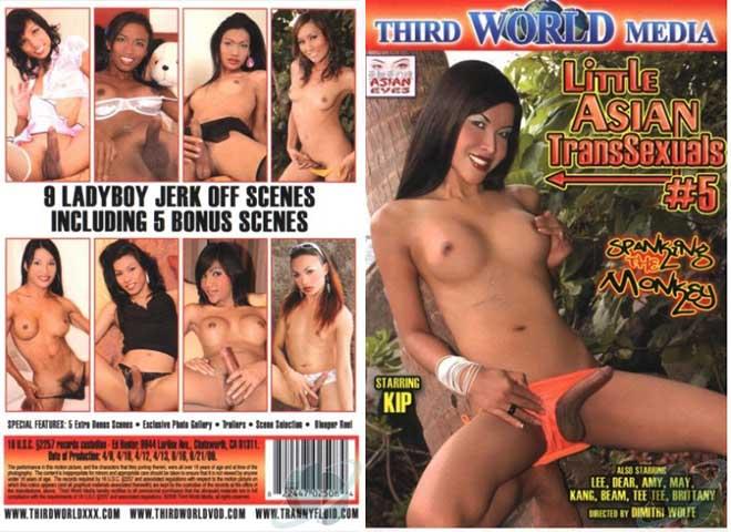 Little Asian Transsexuals 5