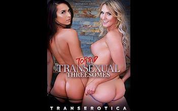 Torrid Transsexual Threesomes