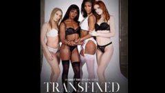 Transfixed 4