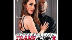 Interracial Trans Action 3
