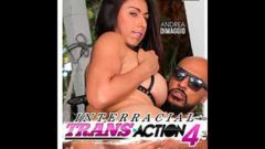 Interracial Trans Action 4
