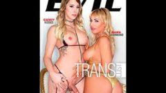 Trans Lust