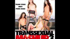 Transsexual Mashup 3