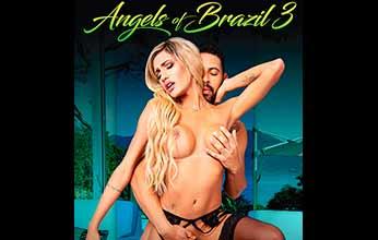 Angels Of Brazil 3