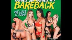 Brazilian Transsexuals Trans On Trans 4 Bareback