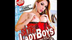 Satin Ladyboys #3